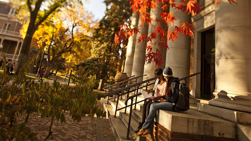 Campus in the fall with autumn leaves and students studying on the steps of an historic building with pillars
